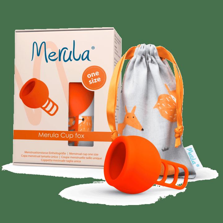 Merula Cup fox 4