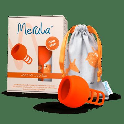 Merula Cup fox 5
