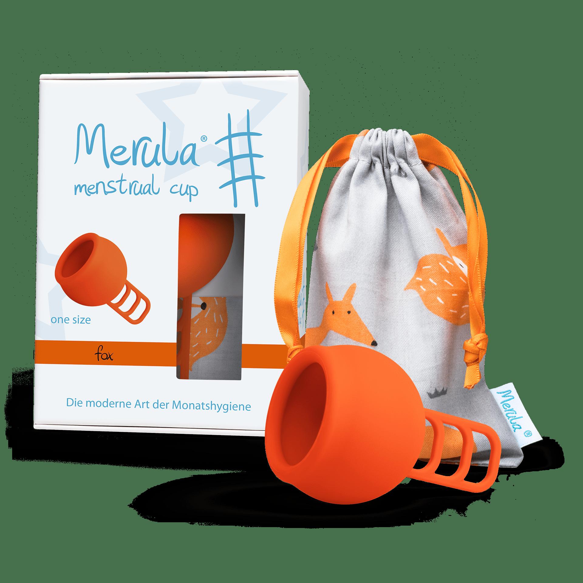 Merula Cup fox 1